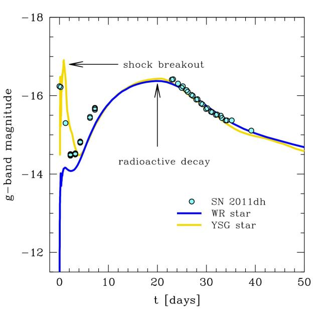 Figure 2: The theoretical light curve for a yellow supergiant (yellow) and blue compact (blue) progenitor compared with the observations of SN 2011dh (cyan circles). From the figure it is clear that the progenitor of SN 2011dh needs to be a yellow supergiant in order to reproduce the observation.