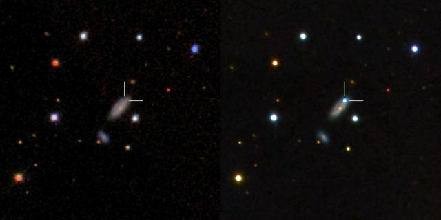 Left: Host galaxy of PTF11kx before the  supernova exploded as seen from the Sloan Digital Sky Survey. Right:  the blue dot is the supernova near peak brightness as seen with LCOGT's  Faulkes Telescope North. The supernova is 600 million lightyears away in  the constellation Lynx. Credit: B.J. Fulton,  LCOGT